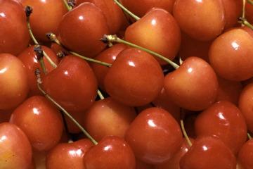 cherrys-closeup_003